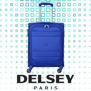 Delsey Indiscrete