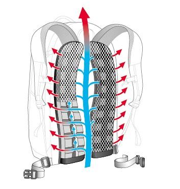 Deuter Airstripes Rückensystem