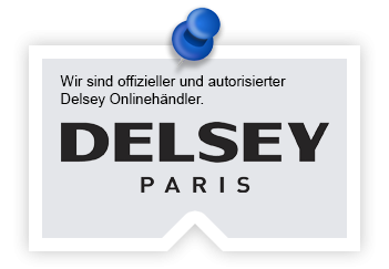 Delsey Koffer